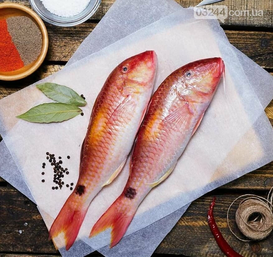 Криза стимулює підприємців розвивати новий бізнес: магазин ексклюзивної морської риби відкрився у Трускавці, фото-2