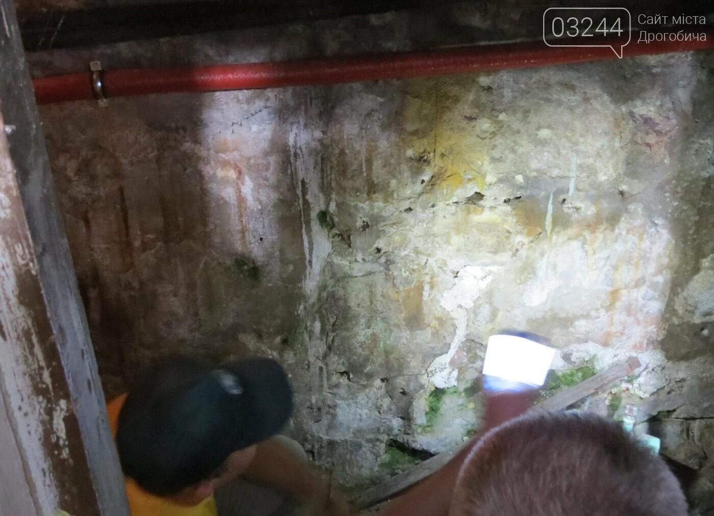 У Дрогобичі стартували нові розкопки – шукають невинних жертв, вбитих енкаведистами  у 40-х  рр. на вулиці І.Франка, фото-9