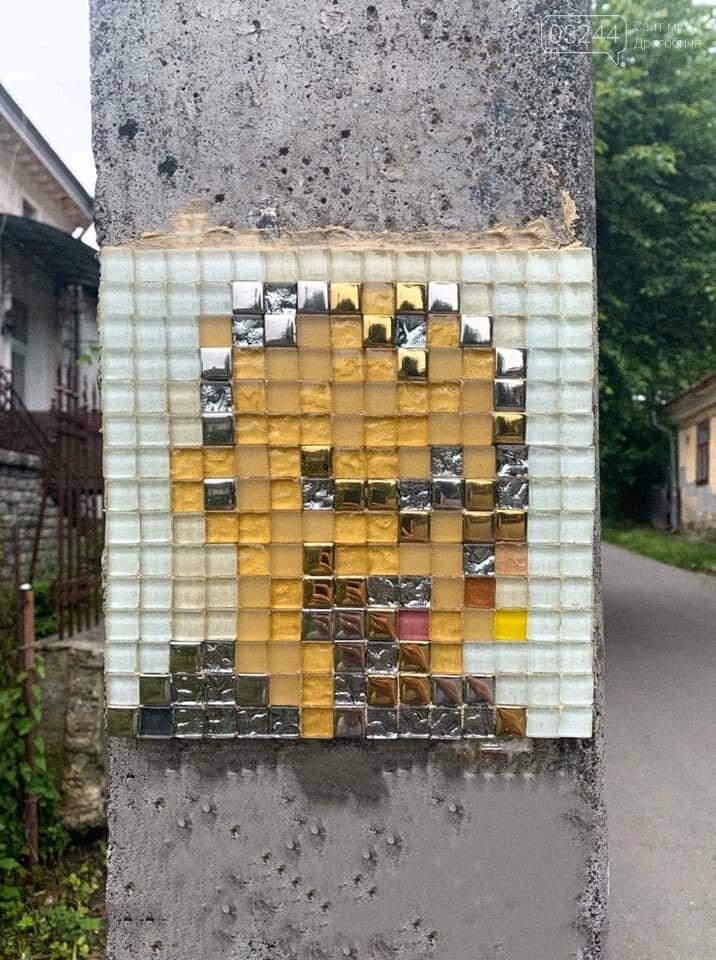 У Дрогобичі реалізовують проєкт «Люди міста у форматі піксель-арт», - Олександр Максимов, фото-6