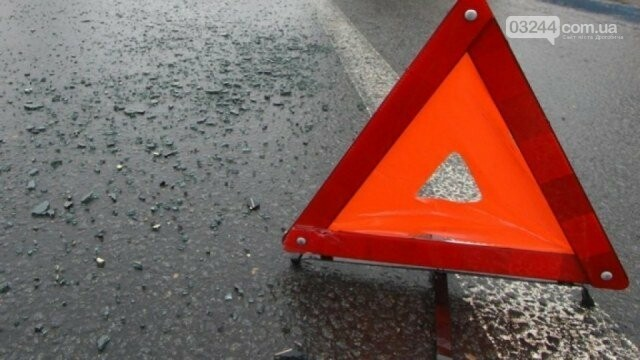 На трасі Львів-Самбір мікроавтобус збив жінку. Від отриманих травм потерпіла загинула, фото-1