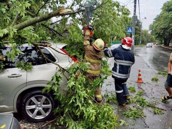 Негода наробила лиха - більше сотні населених пунктів в Україні залишилися без світла, фото-1