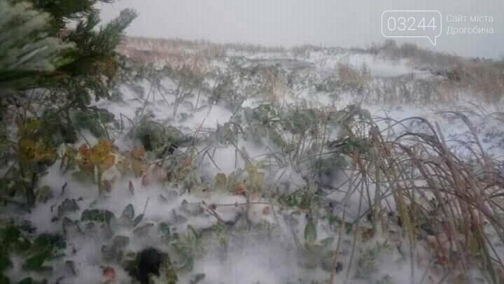 Фото Українського гідрометцентру