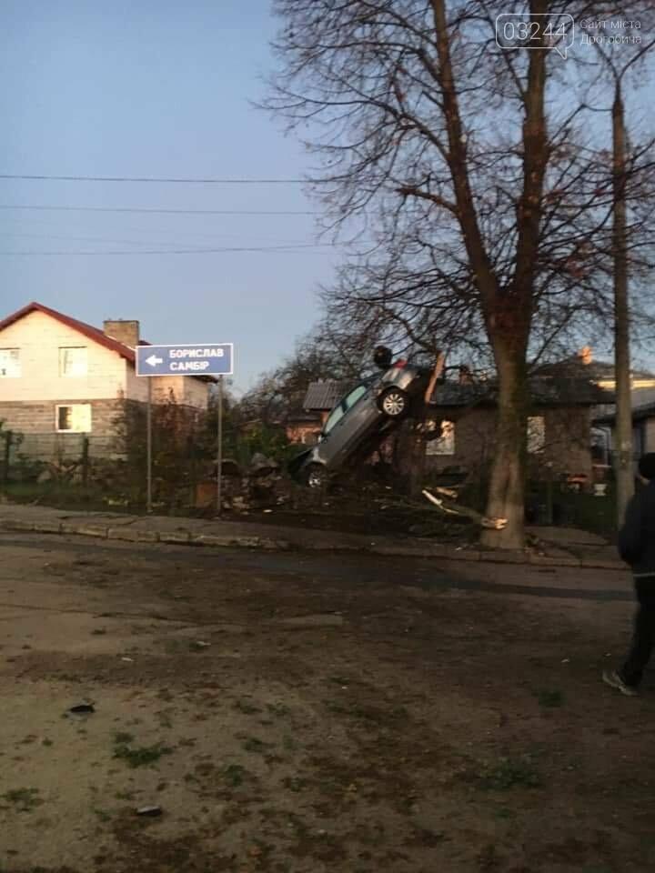 Фото дня.  Внаслідок ДТП автомобіль опинився на дереві, фото-3