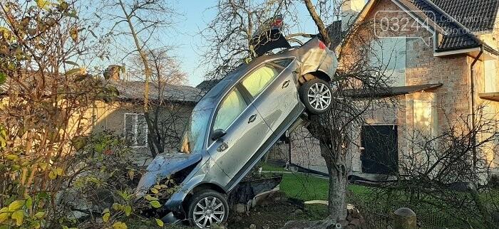 Фото дня.  Внаслідок ДТП автомобіль опинився на дереві, фото-1
