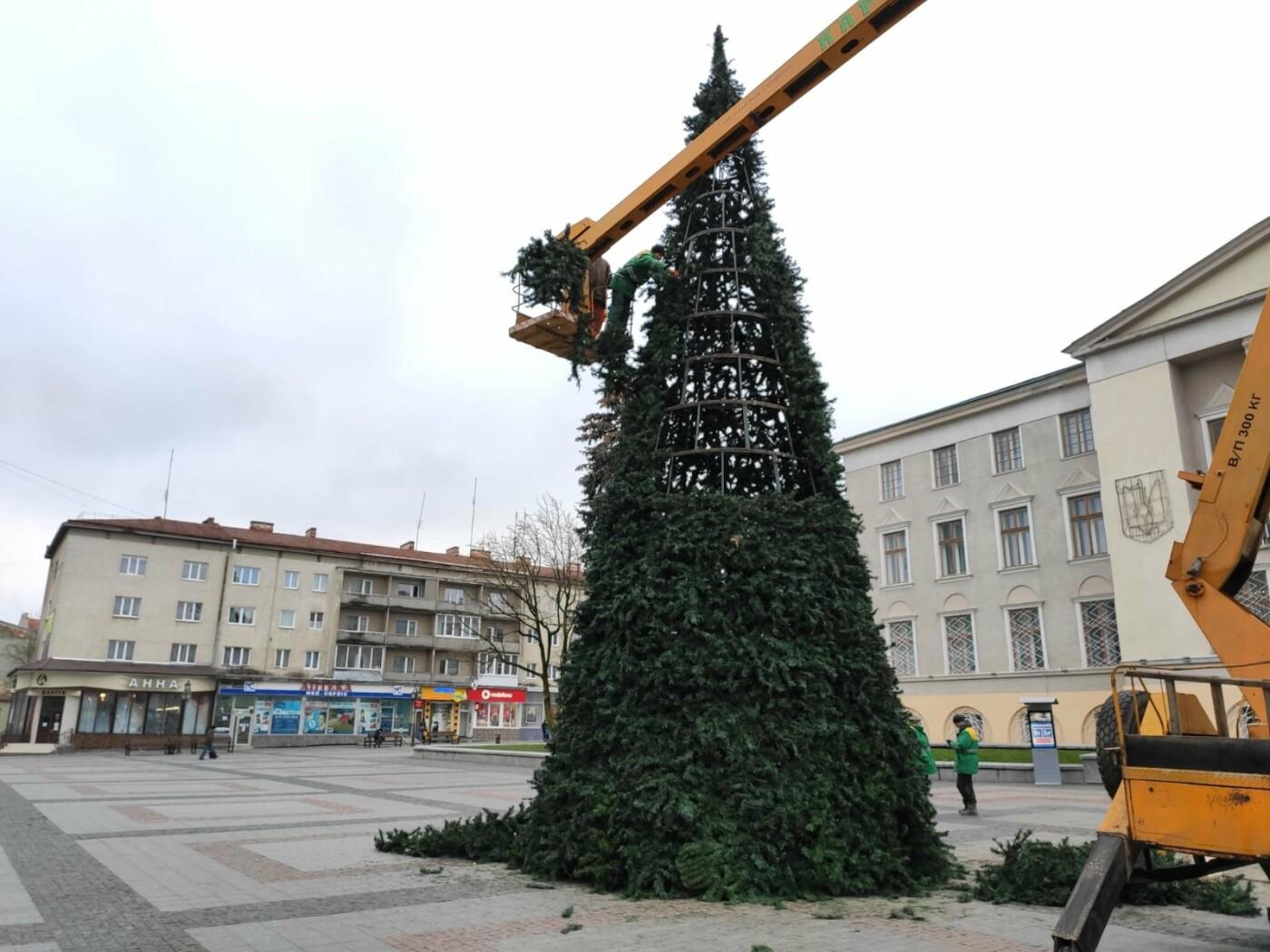 У Дрогобичі встановили новорічну ялинку, - ФОТО, фото-5