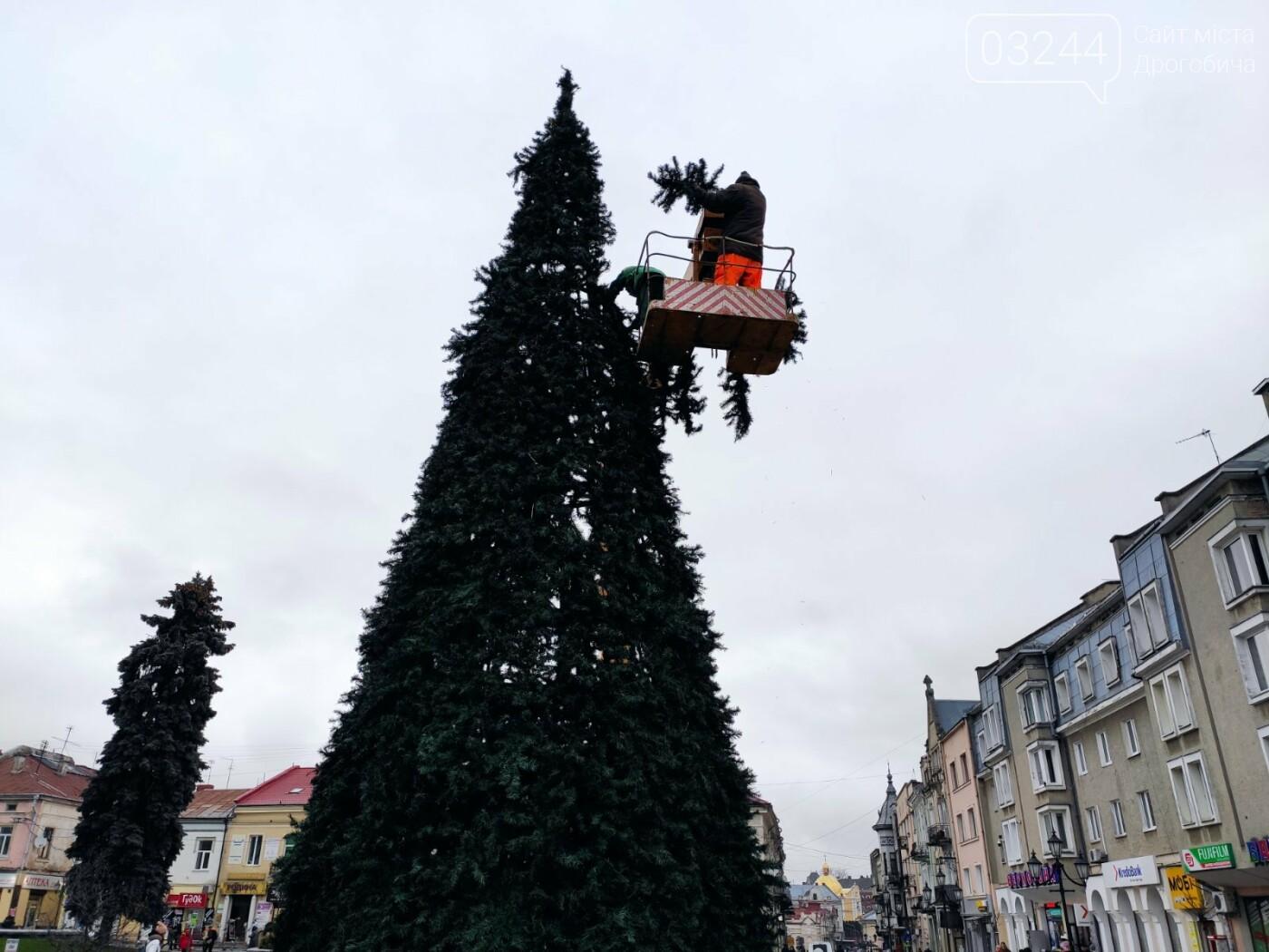 У Дрогобичі встановили новорічну ялинку, - ФОТО, фото-4