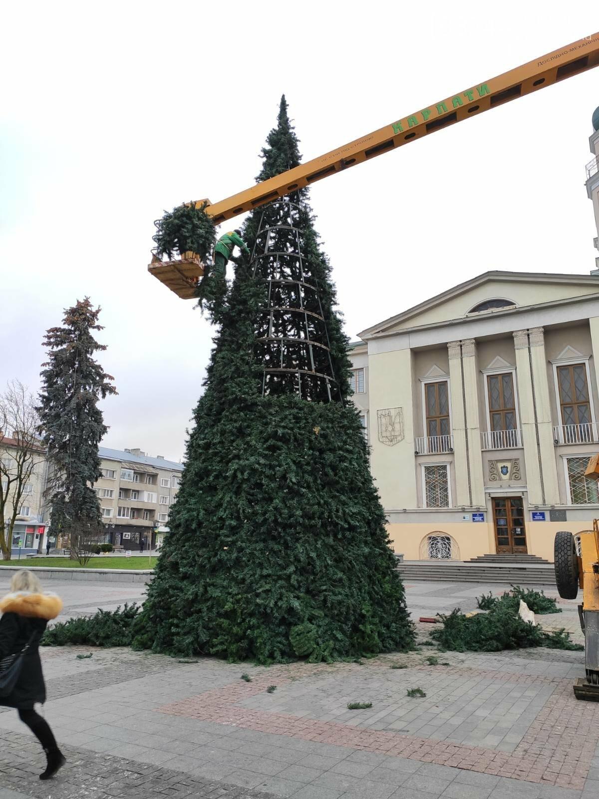 У Дрогобичі встановили новорічну ялинку, - ФОТО, фото-7