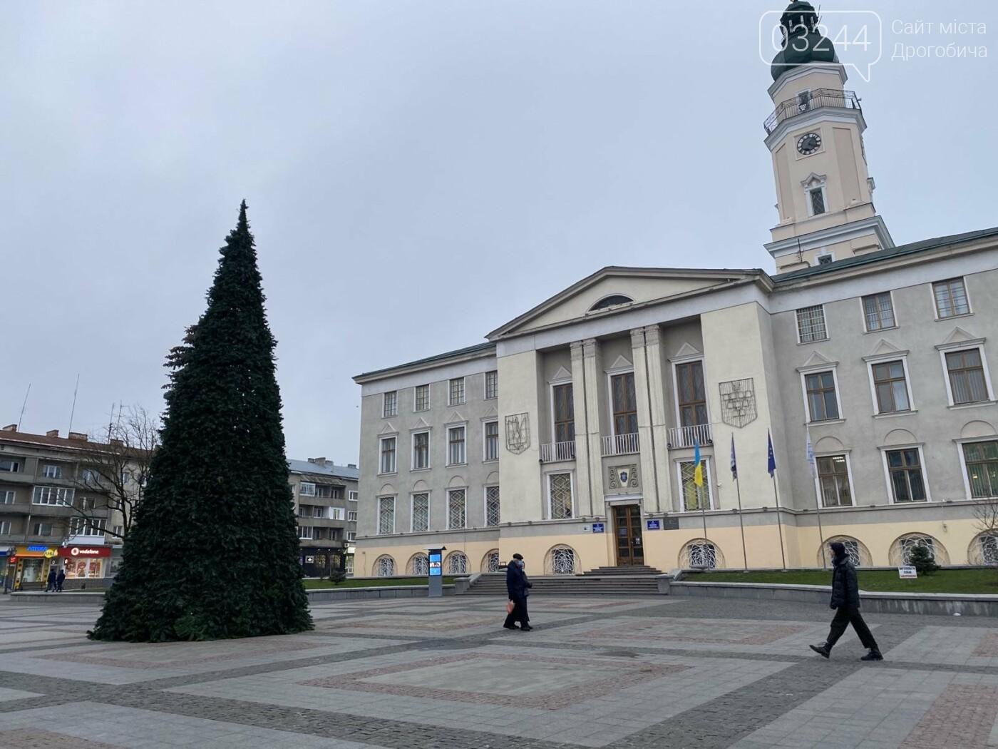 У Дрогобичі встановили новорічну ялинку, - ФОТО, фото-1