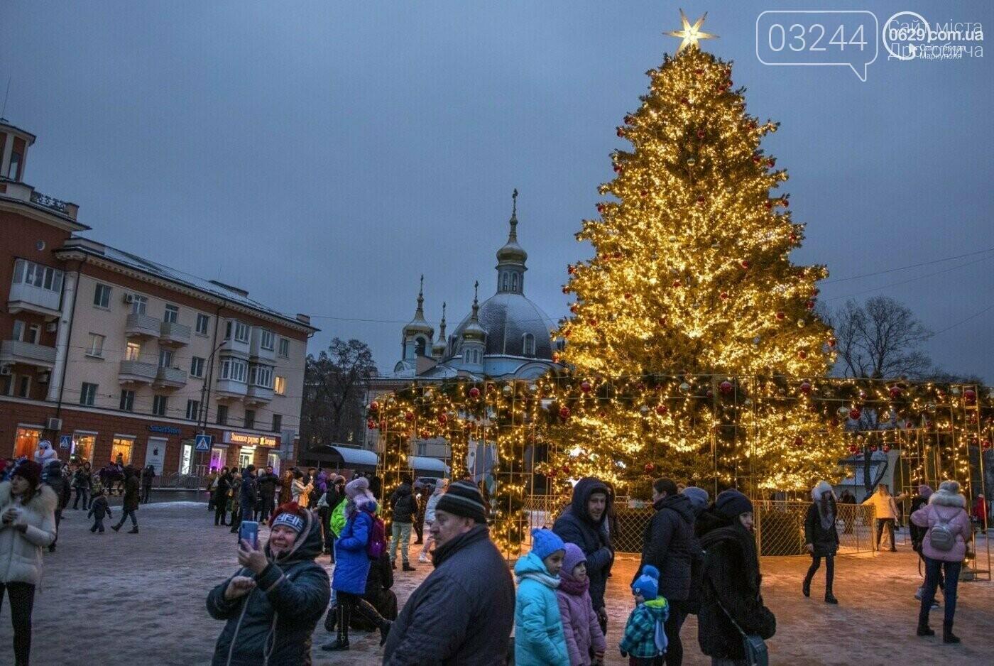 У якому місті України придбали найдорожчу ялинку і декор, фото-1