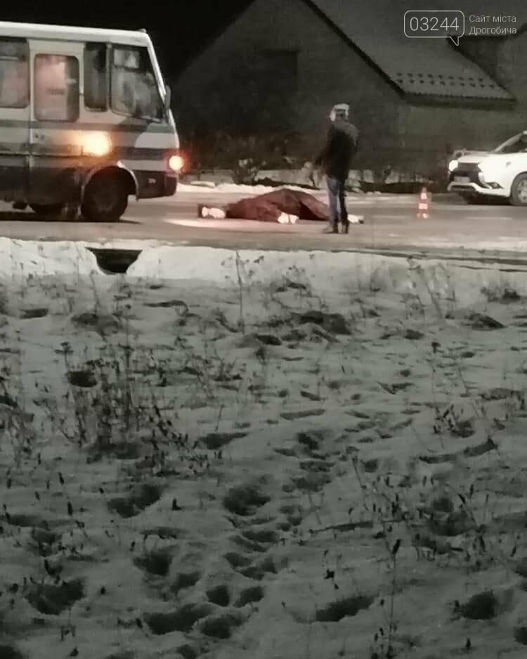 На трасі Київ-Чоп рейсовий автобус збив коня. Тварина загинула на місці, фото-3