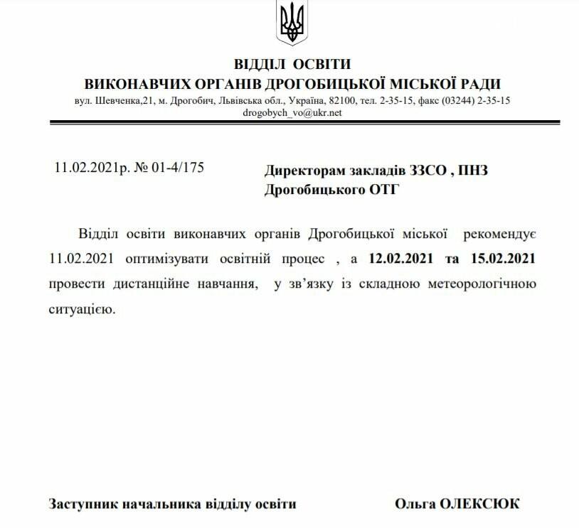 Школам Дрогобича та ОТГ рекомендують перейти на дистанційне навчання, через погіршення погодних умов, фото-1