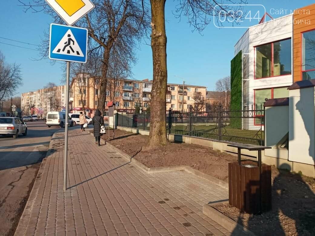 В сквері біля костелу Святого Варфоломія облаштують зелені зони , фото-5